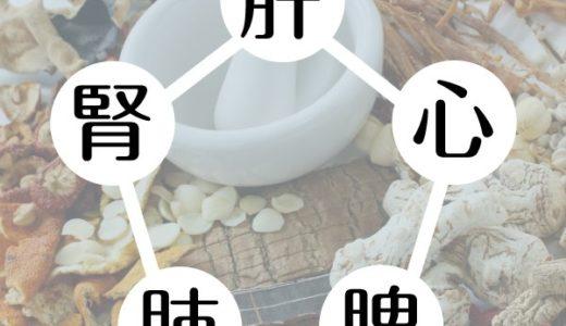漢方(中医学)の臓器の働き
