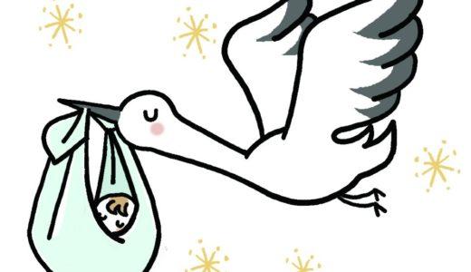 漢方で妊娠しやすい体づくり〜周期療法1〜